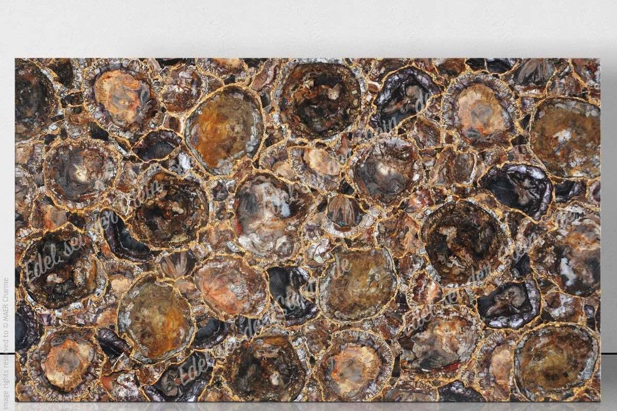 Edel sei der stein   braunes versteinertes holz   mineralisierte ...